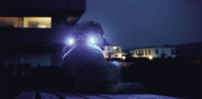 luumi - die Beleuchtung
